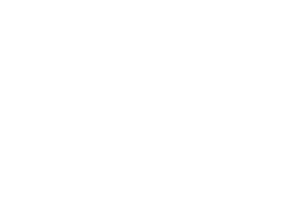 Transient Line Source (TLS) Needle